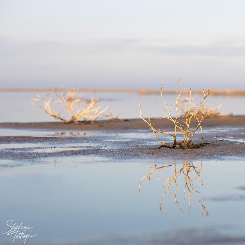 Norderney - Ostheller